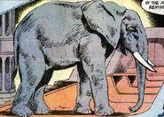 Elephant DC Comics