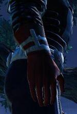 Adarian Travelers wristwraps