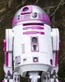 R2-KT set photo.png