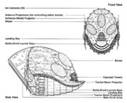 Shriwirr egvv
