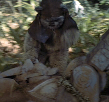 File:Ewok foot hacker.png