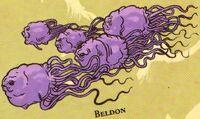 Beldons SWGA.jpg