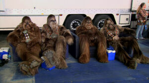 Chillin wookiees