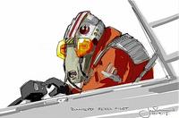 Bullhead rebel pilot