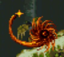 File:DagobahUnknownScorpion.jpg
