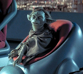 File:Yaddle in chair.jpg