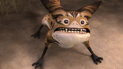 Surprised Loth-cat