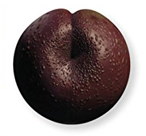 File:Plum-SWVE.png