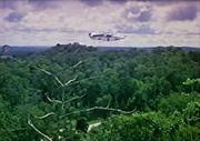 Rwookrrorro forest-SWHS