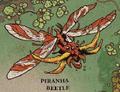 Piranha beetle.png