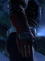 Warrior's gloves