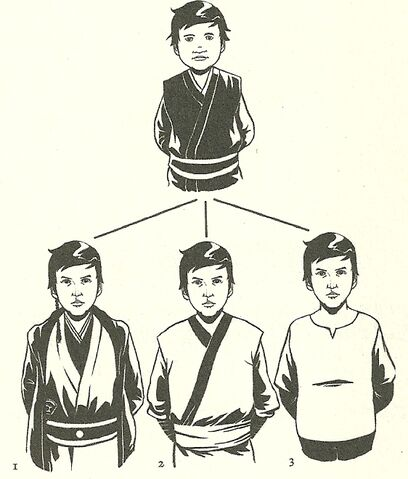 File:Initiate's future tree diagram0001.jpg