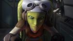 Hera in Breaking Ranks