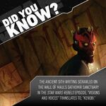 Did You Know Maul