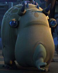 Puffer pig