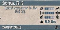 TS 15