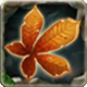 Storm Badge 5