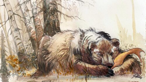 Syberia II Artwork 9