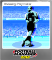 Football Manager 2016 Foil 1