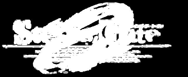 File:Sg0logowhite.png