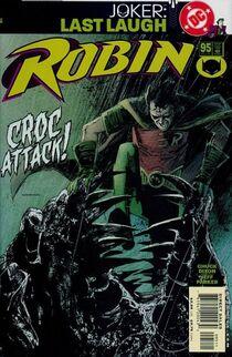 Robin 95 cover