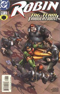 Robin 107 cover