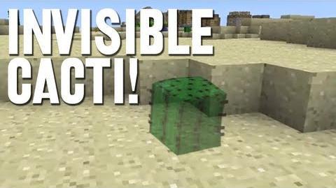 Invisible Cacti!