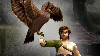 Hawk VS Monkey