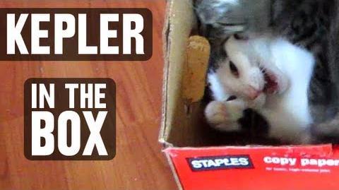Sagan and Kepler - Kep In The Box