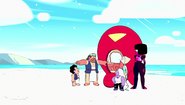 The New Crystal Gems 005