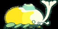 Gândacul Cerului
