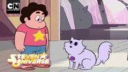 Steven's Cat Finger Steven Universe Cartoon Network