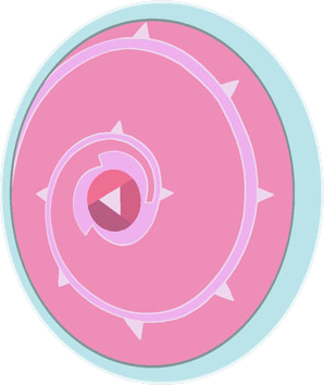 File:Stevens shield.png