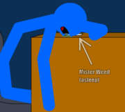 Mister Weed