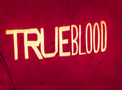 True Blood Portal