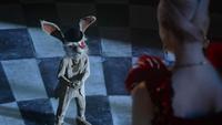 White Rabbit OW102