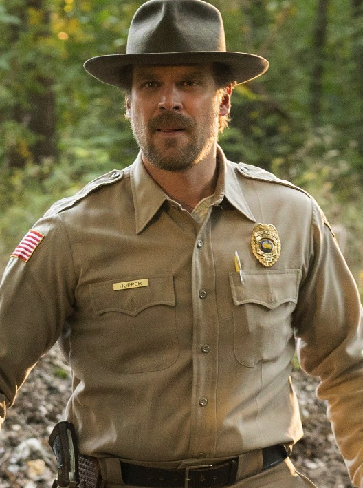Image result for Chief Hopper stranger things