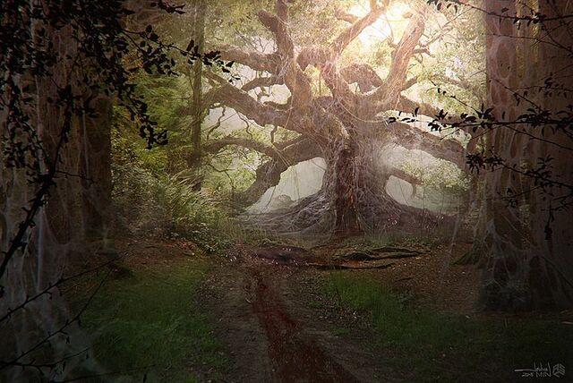 File:Stranger-things-concept-art-forest-rift-pic.jpg