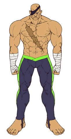 File:Sagat (Alternate Costume).png