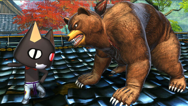 File:Bear vs cat.jpg