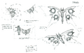 Str2 swallowtail concept