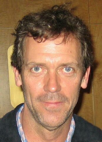 File:Hugh Laurie Actors Guild.jpg