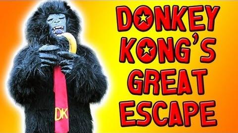 TSVGS - Donkey Kong's Great Escape - That Stupid Video Game Show
