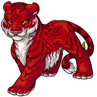 Poll tigrean