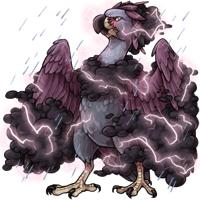 Fester storm