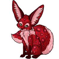 Jollin cherry