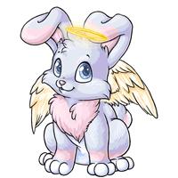 Kanis angelic