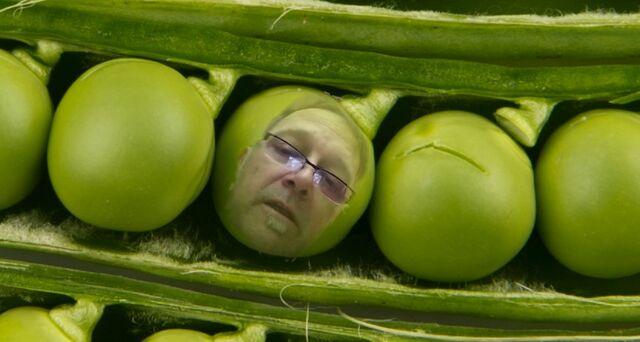 File:Peas in a pod.jpg