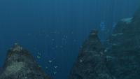 Crag Field Updated 7