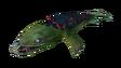 Lava Lizard Fauna B